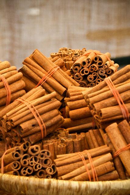 by Vicente Villamón Canela en rama, stick cinnamon
