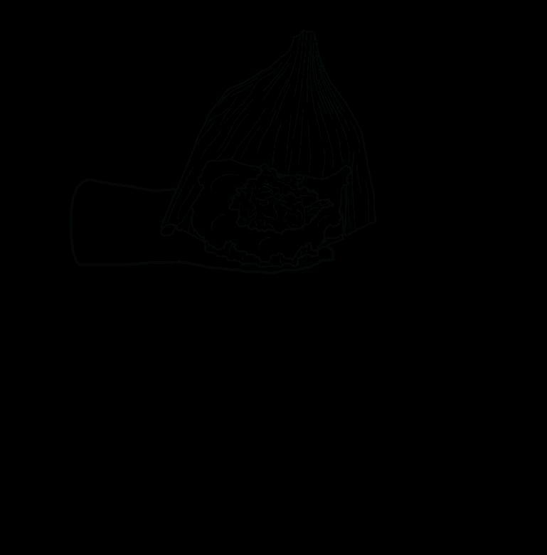 007-3-tamales